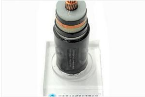 MV Power Cables (XLPE Insulated)